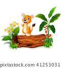 卡通 狮子 婴儿 41253031