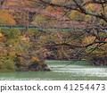 ต้นเมเปิล,ฤดูใบไม้ร่วง,การท่องเที่ยว 41254473