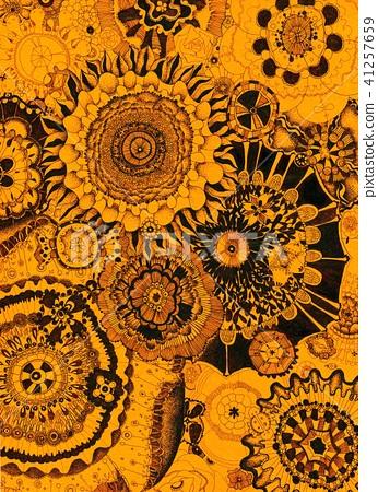 Floral 41257659