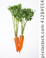 carrots with leaves, with leaves, with greens 41284554
