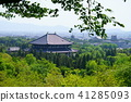 Nara Park in May and Todaiji 2 41285093