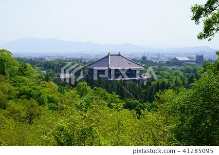五月的奈良公園·東大寺4 41285095