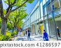 도쿄 하라주쿠 오모테 산도의 풍경 41286597