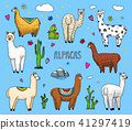 Set of cute Alpaca Llamas or wild guanaco on the background of Cactus and mountain. Funny smiling 41297419