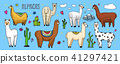 Set of cute Alpaca Llamas or wild guanaco on the background of Cactus and mountain. Funny smiling 41297421