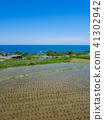 단고 반도에있는 일본의 계단식 논 100 선 중 하나 袖志의 계단식 논 41302942