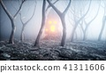 stone screaming head in fog night forest. Fear and horror. Mistyc concept of halloween. 3d rendering 41311606