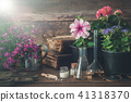 Seedling of flowers, old books and homeopathy drug 41318370