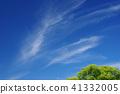 하늘과 녹색 (배경 자료) 41332005