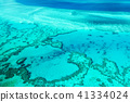 Great Barrier Reef 41334024