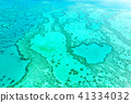 Great Barrier Reef 41334032