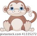 Baby monkey  41335272
