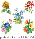 用水彩畫的五種夏天花 41343956