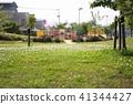공원, 파크, 민들레 41344427