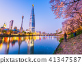 Cherry blossom of Spring in Seoul, South Korea . 41347587
