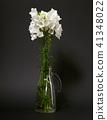 flower is in vase on blank background 41348022