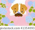 狗 狗狗 花朵 41354093