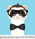 Ferret boy portrait with glasses and butterfly. Vector illustration. 41355956