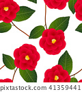 Red Camellia Flower on White Background 41359441