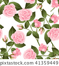 Pink Rose on White Background 41359449