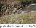 Noboriki Valley, Hokkaido, Hokkaido - nearby small river 41361628
