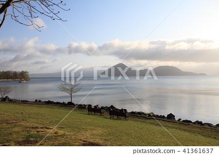 洞爺湖畔的景色 41361637