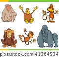 monkeys animal characters cartoon set 41364534