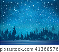 Vector winter wonderland background.  41368576