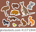 Australia wild animals cartoon popular nature characters flat style mammal collection vector 41371944