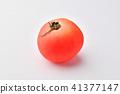 มะเขือเทศ,ผัก,พื้นหลังสีขาว 41377147