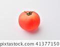 มะเขือเทศ,ผัก,พื้นหลังสีขาว 41377150