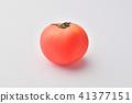 มะเขือเทศ,ผัก,พื้นหลังสีขาว 41377151