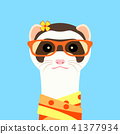 Ferret girl portrait with orange glasses and scarff. Vector illustration. 41377934