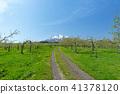 봄의 이와키와 쓰가루 사과 농장 41378120
