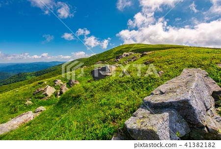 lovely summer landscape 41382182