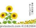 sunflower, sunflowers, summer 41382664