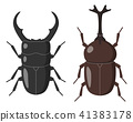 rhinoceros beetle stag 41383178