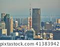 도쿄 타워와 빌딩 41383942