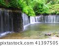 백사의 폭포 (나가노 현 카루이자와) 41397505