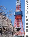 [벚꽃 명소] 조우 죠에서 보는 벚꽃 풍경 (도쿄 타워) 41400596