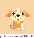 Chihuahua dog. 41401092