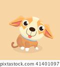 Chihuahua dog. 41401097
