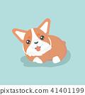 corgi vector dog 41401199