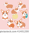 Cute welsh corgi dog characters set. 41401200