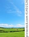 홋카이도 푸른 하늘과 대지 41401526