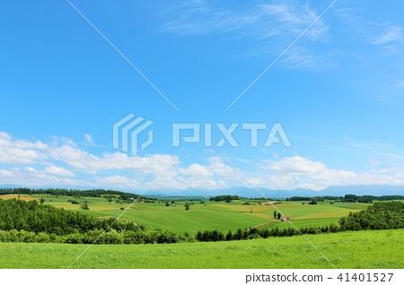홋카이도 푸른 하늘과 대지 41401527