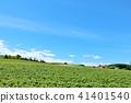 홋카이도 푸른 하늘의 비 에이 41401540