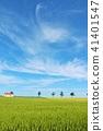 北海道藍天的土地 41401547