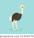 Cute Ostrich in flat style isolated. 41404570