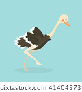 Cute Ostrich in flat style isolated. 41404573